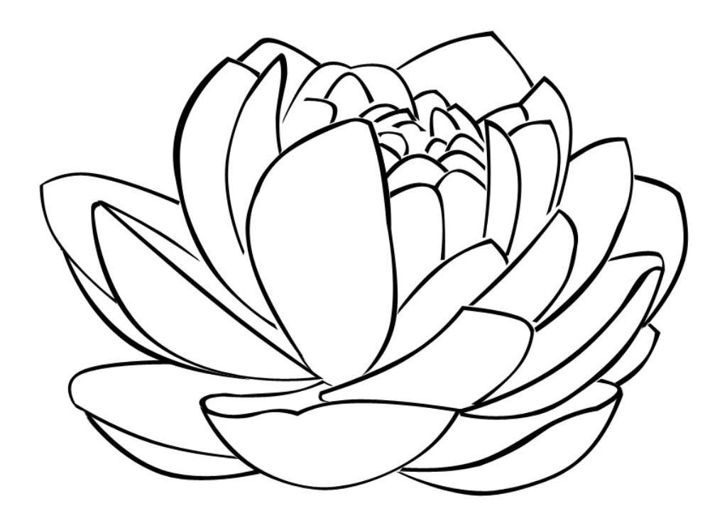 BUDDHISTISK NONNE I DANMARK
